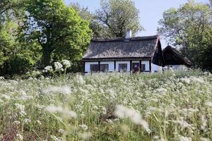 idyllisch huisje met rieten dak