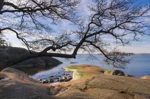 Oostzee landschap foto