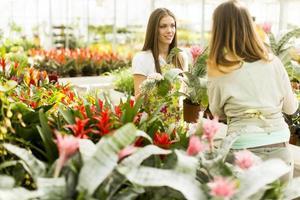 jonge vrouwen in de bloementuin foto