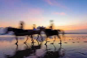 paardrijden bij zonsondergang foto