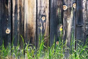 wild gras in de buurt van de oude houten hek foto