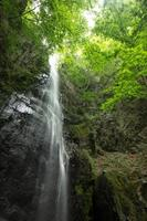 waterval en fris groen (tokyo okutama hyakuhiro waterval) foto