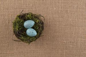 blauwe gespikkelde eieren in nest foto