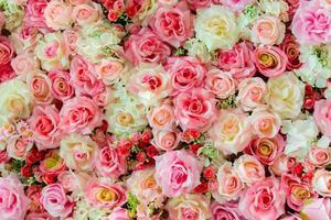 zachte kleur rozen achtergrond foto
