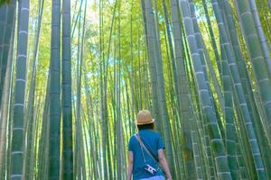 jonge vrouw verkent in de bamboebossen
