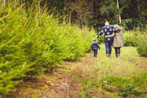 gelukkig gezin met kind kiezen kerstboom op de boerderij