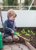 kleine jongen tuinieren en bloemen planten in de tuin foto