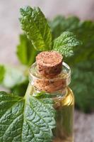 Citroenmelisse olie in een glazen fles close-up verticaal foto