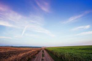 dorpsweg in tarweveld onder bewolkte hemel foto