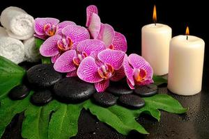 spa set van bloeiende takje ontdaan van paarse orchidee, phalaenopsis foto