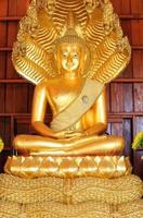 Boeddha beeld foto