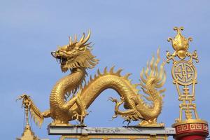 Chinese draak. foto