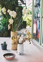 gedroogde bloem in vaas foto