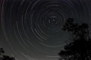 startrail met boomsilhouet bij nacht foto