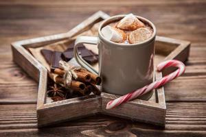 cacaodrank met marshmallows