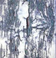abstract roestige deur curch lombardije italië varese sumirago