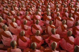 roze nonnen aanbidden, myanmar foto