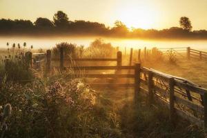 prachtig zonsopganglandschap over mistig Engels platteland met g foto