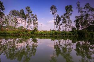zonsondergang op de rivier met bomen foto