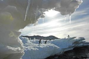 ijssculptuur, cape denison, gemenebest baai, antarctica foto