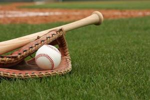 honkbal & vleermuis op het gras foto