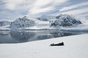 man liggend op de sneeuw