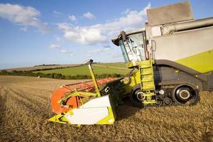 combineren tarwe oogsten in zonnige landelijke veld foto