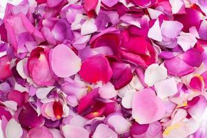 rozenblaadjes van verschillende kleuren foto