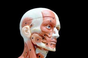 spier van menselijk gezicht foto