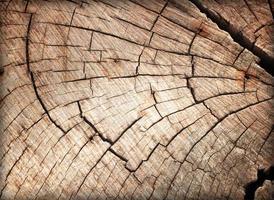 oud hout foto