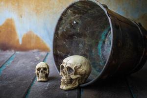 schedel in een emmer op houten