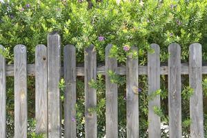 houten hek foto