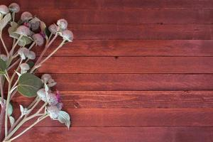 klit bloemen op een houten met kopie ruimte foto