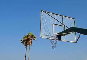 basketbal en palmen foto