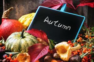 pompoenen, noten en leeg bord foto