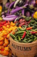 biologische diverse paprika's op de boerenmarkt