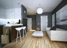appartement studie moderne stijl foto