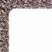 hoekbloemen van lavendel