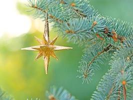 Kerstster op pijnboom