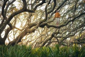 eenzame man staat op boomtak bij zonsondergang foto