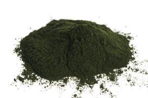 groene chlorella foto