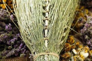 close up gedroogde equisetum arvense foto
