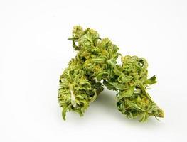 medicinale marihuana foto