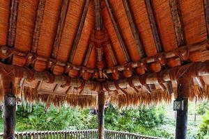 prachtig landschap van tropische jungle. foto