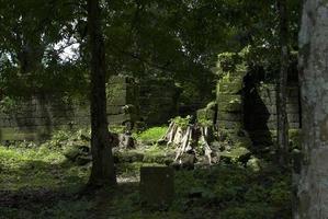 oude ruïnes diep in een jungle foto