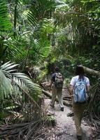 jungle trektocht foto