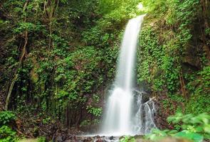 kleine waterval in de jungle