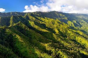 prachtig luchtfoto van spectaculaire oerwouden, kauai