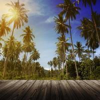 houten platform naast jungle met kokospalmen foto