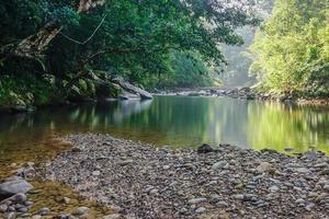 kleine natuur jungle rivier in Sabah Maleisisch Borneo.